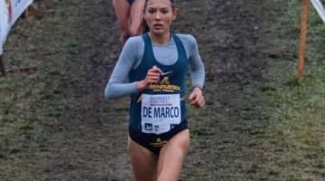 DeMarco-Campaccio17-sito